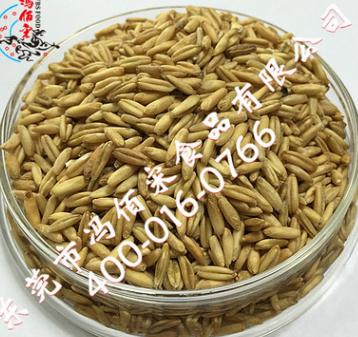 5kg装熟燕麦 低温烘焙五谷杂粮燕麦粉豆浆 磨粉原料批发厂家