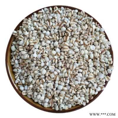 熟小薏米 低温烘焙熟五谷杂粮 滋补养生品 现磨豆浆原料批发零售