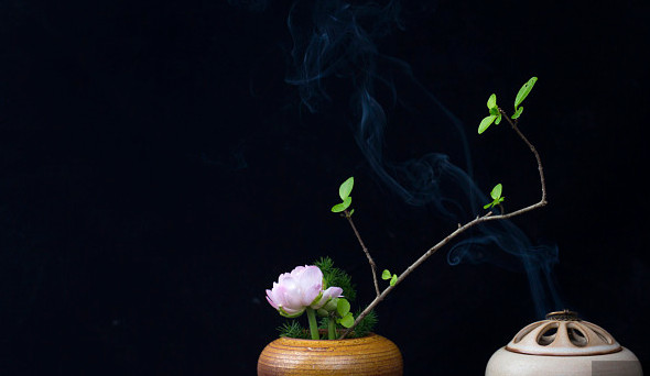 弘扬中医药养生文化,云阳县举办首届中医药文化节