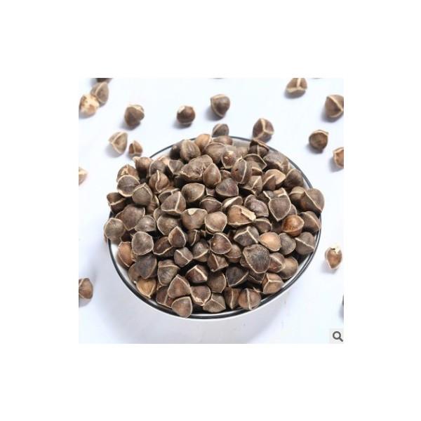 食用辣木籽 辣木籽散装批发印度辣木籽 量大从优支持一件代发