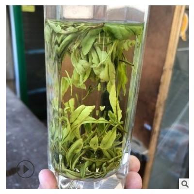 茶农大叔2020新茶安吉特产 凤型白茶绿茶原产地批发白化度高