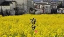 今日春分,义乌最美的时节到了,踏青、养生走起来!